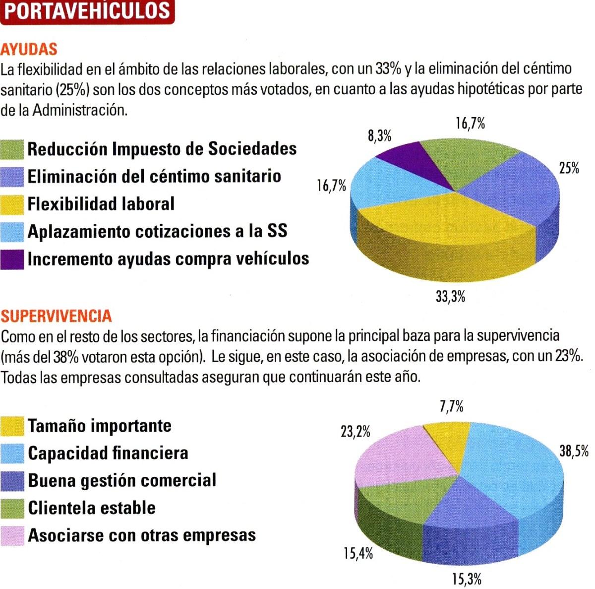 RADIOGRAFÍA DEL SECTOR PORTAVEHÍCULOS EJERCICIO 2010